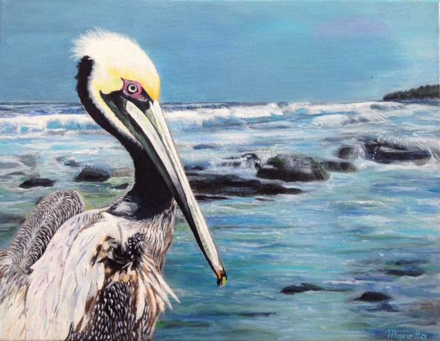 Pelican Watch by Marietta Modl