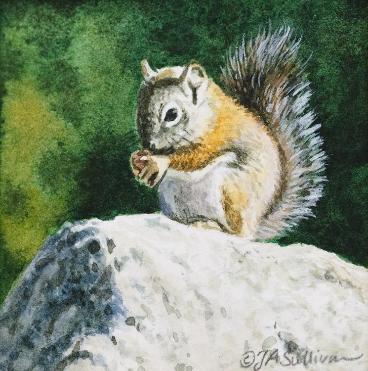 Chipmunk 2 by Judy Sullivan $160