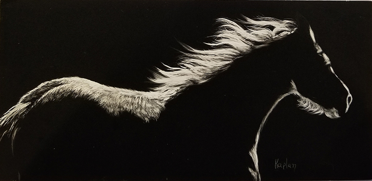 Unbridled by Lisa Kaplan $350