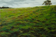 Grass by Shelah Horvitz $665