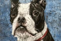 Mr. Handsome Boston Terrier by Kristen Jones-Wickersham $150