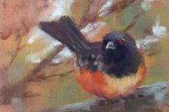 My Visitor by Deborah Henderson $125