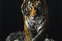 Night Stalker by Lisa Kaplan $1500
