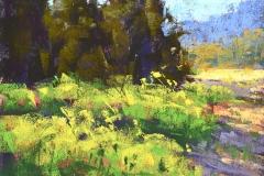 Waltz of Light and Shadow by Alejandra Gos $325