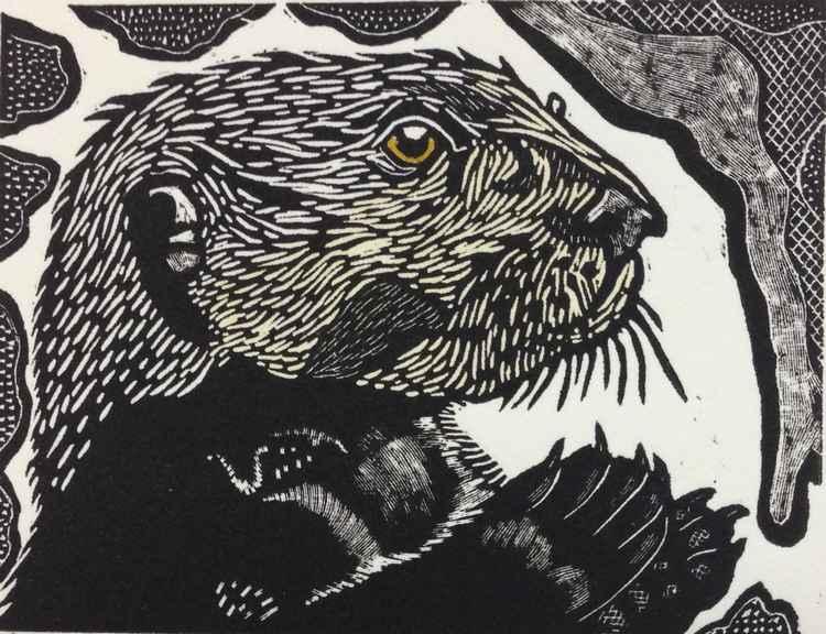 Web _Water Street Otter_ Philip Carrico $275