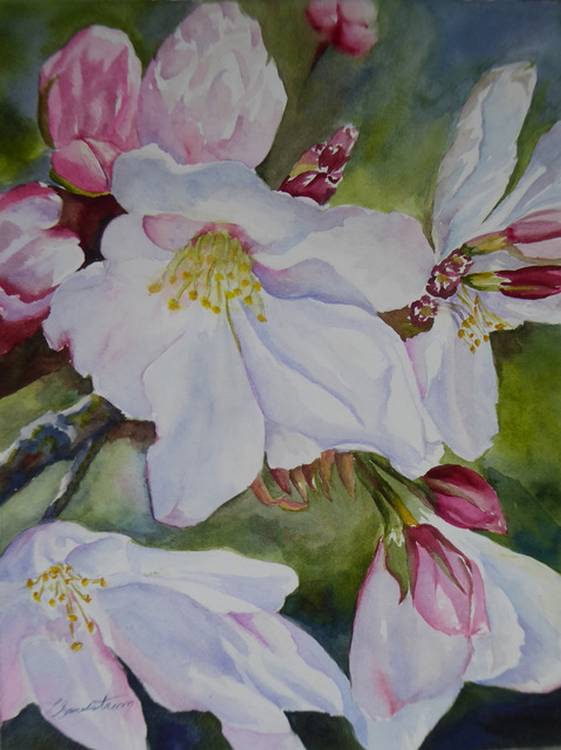 Web It's Blossom Time! by Lauriel Sandstrom $295