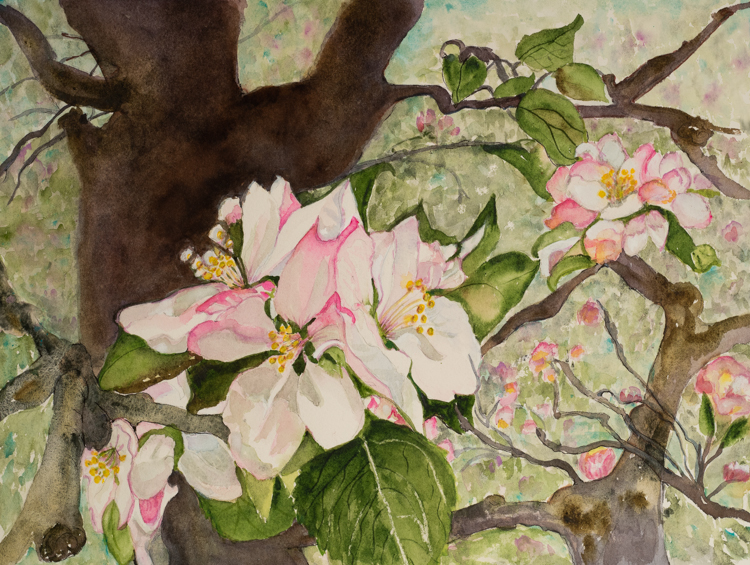 First Blossoms by Eve Ingraham