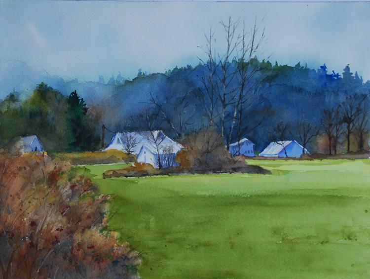 Skagit Valley Farmland by Mary Anderson