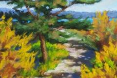Beach Trail by Cheryl A. Hufnagel