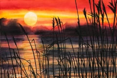 Wetland Sunset by Rick Tuthill