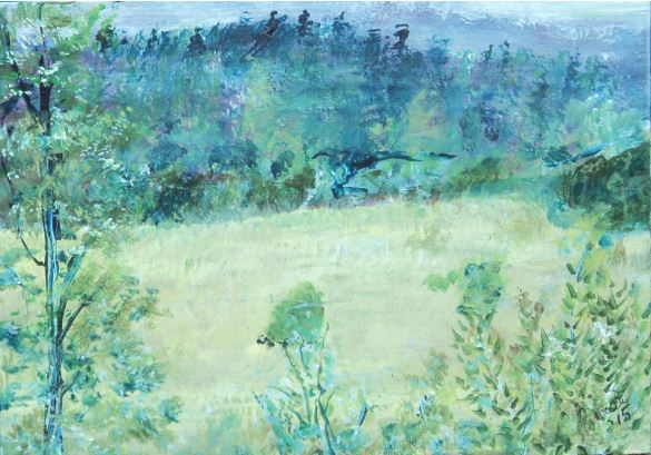 Divide Meadow by Brent Gibb $100