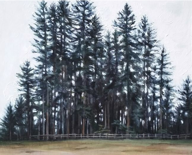 Fenced In by Shelby Cook $200