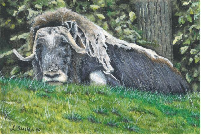 Grassy Repose by Lonetta Avelar $420