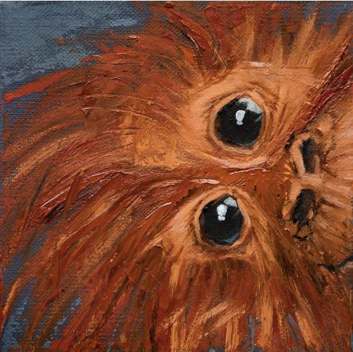 How's It Hangin - Bad Hair Day Series by Jani Freimann $250