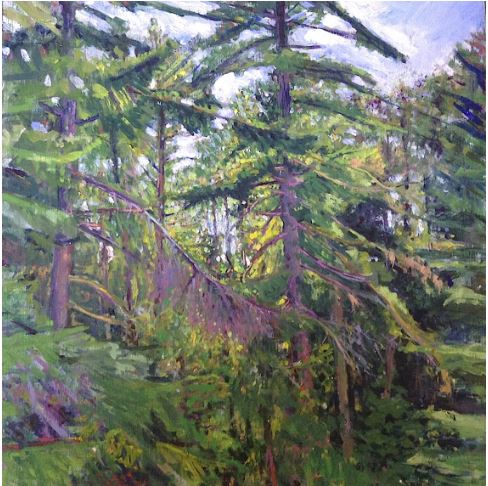 In the Forest by Bruce Amstutz $450