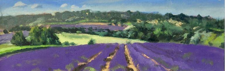Lavender Panorama by Glen Kessler $300