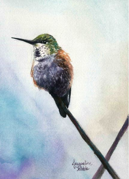 Perched Hummingbird by Jacqueline Tribble $245