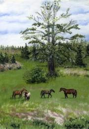 WEB Pasture Pals by Susan Swapp $350