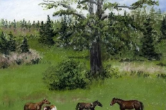 WEB Pasture Pals by Susan Swapp $350
