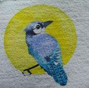 WEB Blue Jay by Sarah Crumb $250