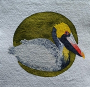 WEB Brown Pelican by Sarah Crumb $250