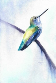 WEB Heliodor (Anna's Hummingbird) by Jacqueline Tribble $295