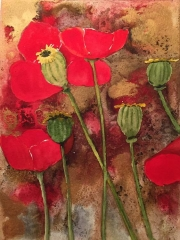 WEB Poppy Study by Lynnea Mattson $120