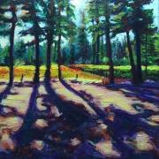 WEB Umatilla National Forest, Cedar Shadows by Brandi Reyna $150