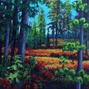 WEB Umatilla National Forest, Huckleberry Understory by Brandi Reyna $150