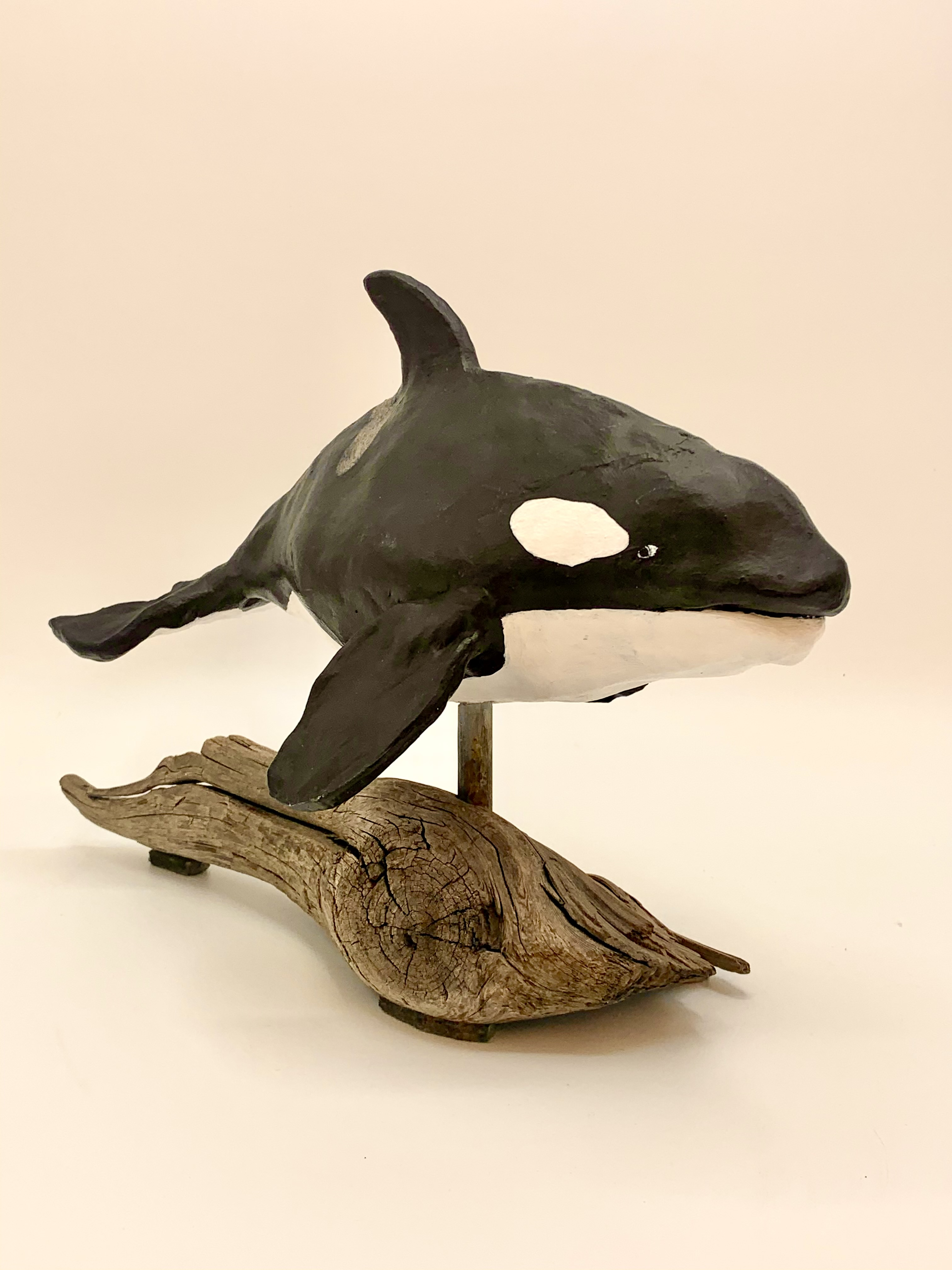 Orca-pic-2