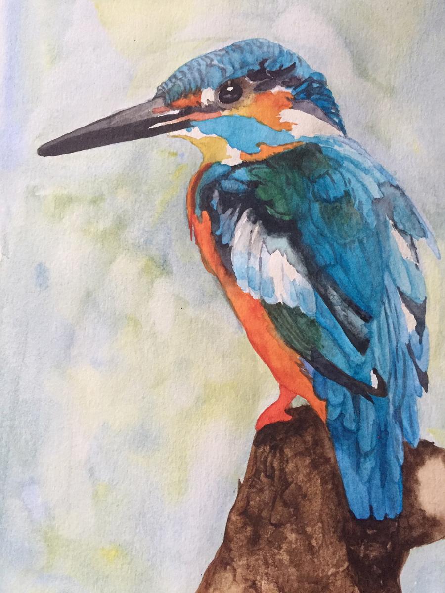 Kingfisher by Lynnea Mattson, Watercolor
