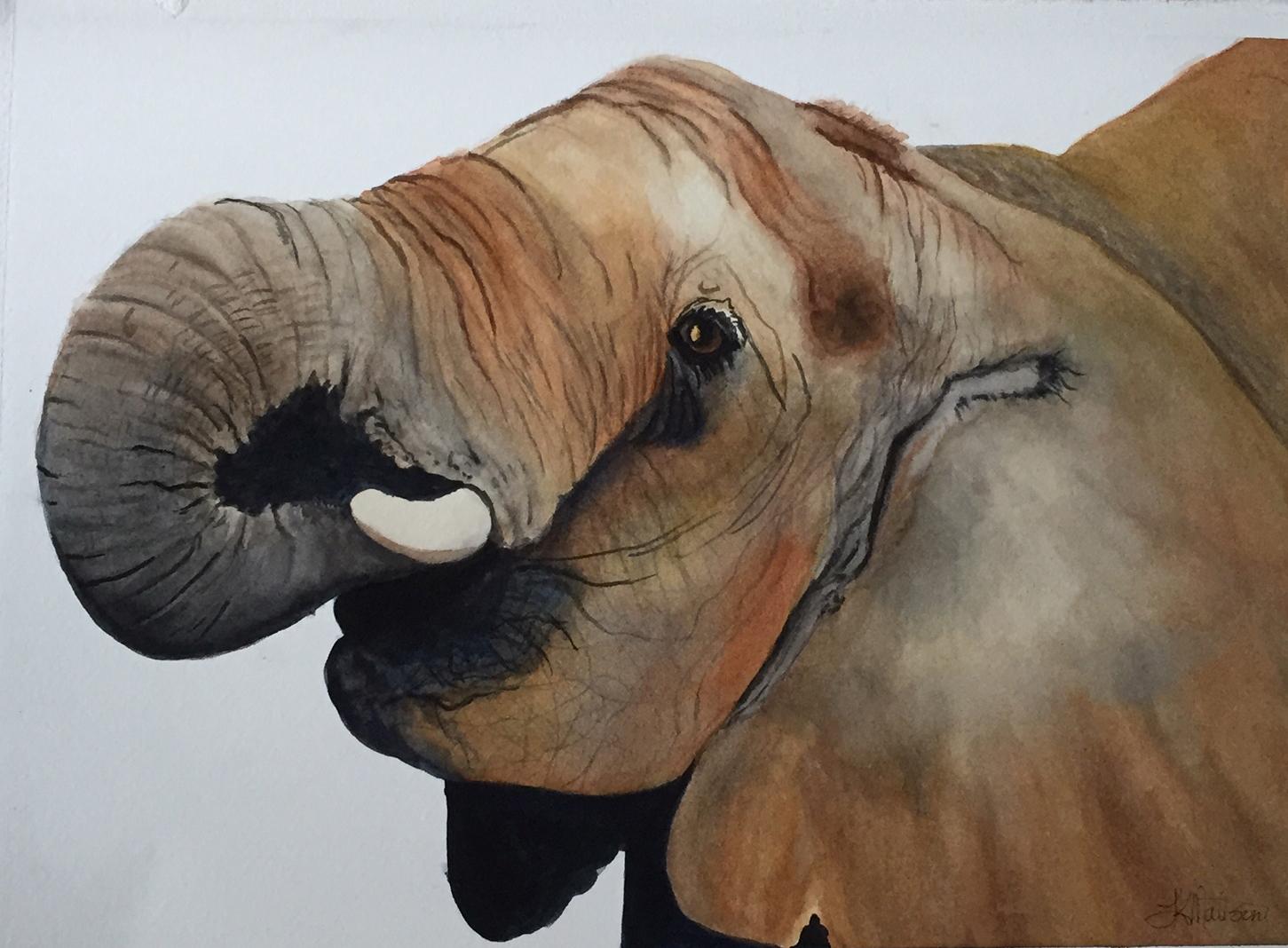Elephant by Lynnea Mattson, Watercolor
